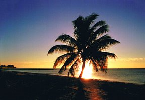 """Smathers Beach Sunset, Key West, FL"" 35mm color photograph. © Roy Al Rendahl"